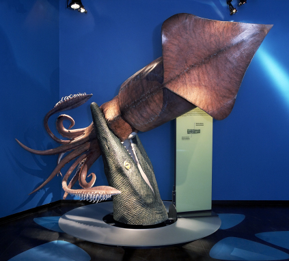 Tusoteuthis caught by Mosasaur